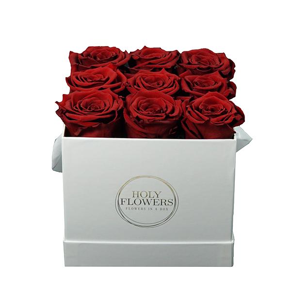 heritage red s rote rosen in der box blumenboxen holy flowers rosen in der box. Black Bedroom Furniture Sets. Home Design Ideas