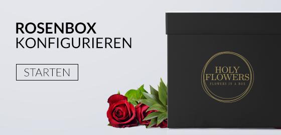 holy flowers rosen in der box exklusive rosenboxen. Black Bedroom Furniture Sets. Home Design Ideas